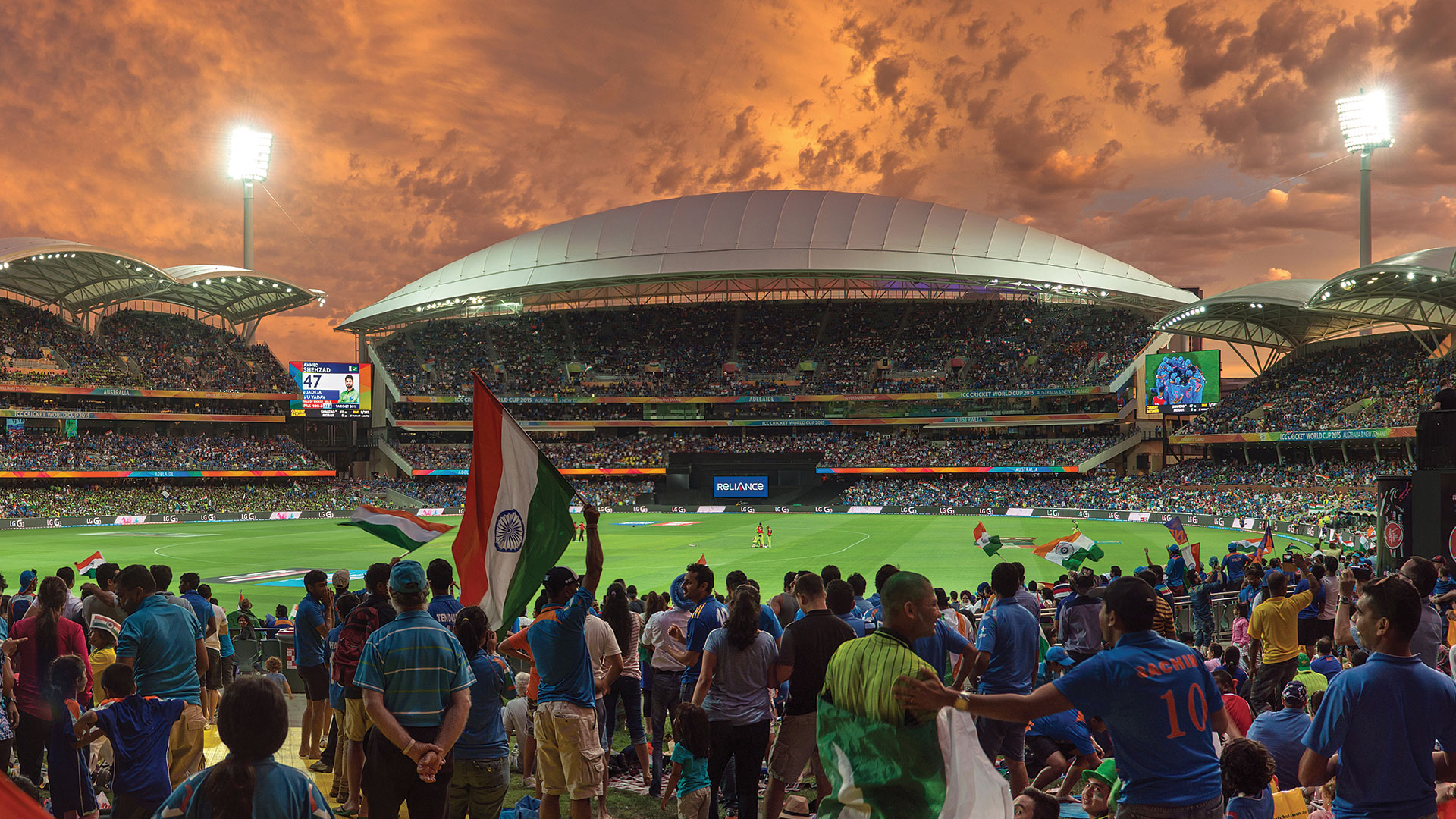 T20 World Cup bonanza for Adelaide