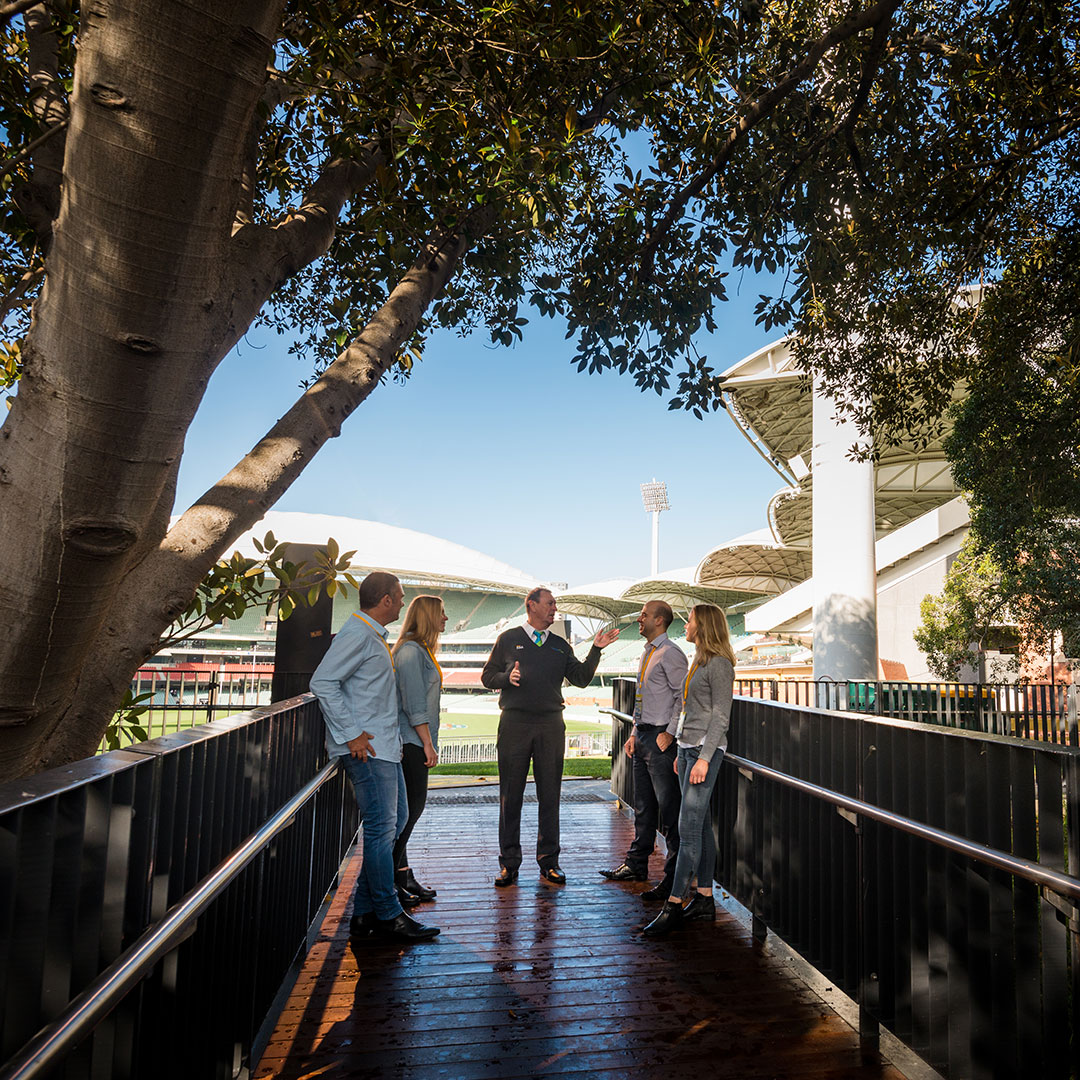 Discover on an Adelaide Oval Tour