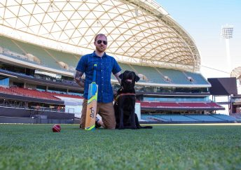 Guide Dog at Adelaide Oval