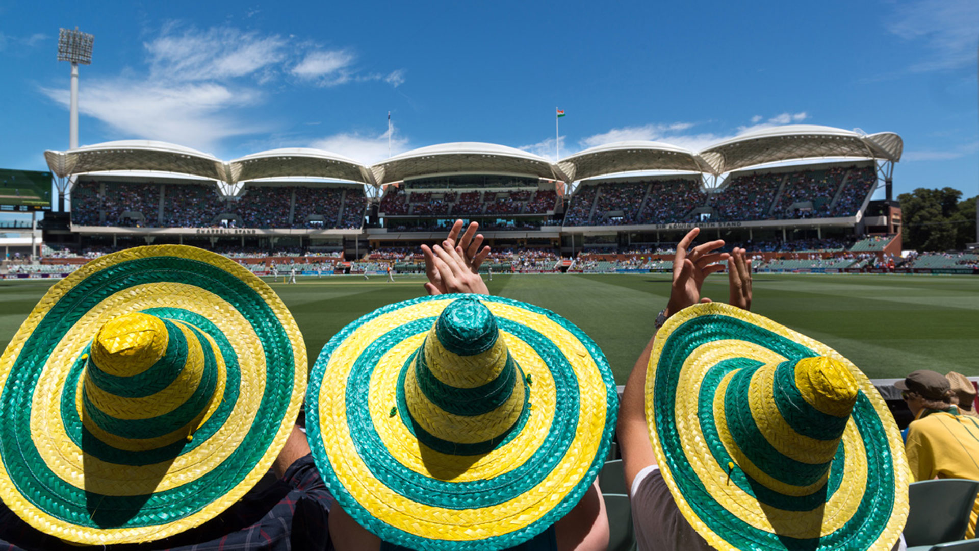 Fans watching the ODI at Adelaide Oval